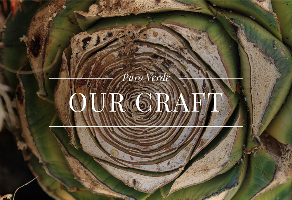 Puro Verde Tequila - Explore Our Craft